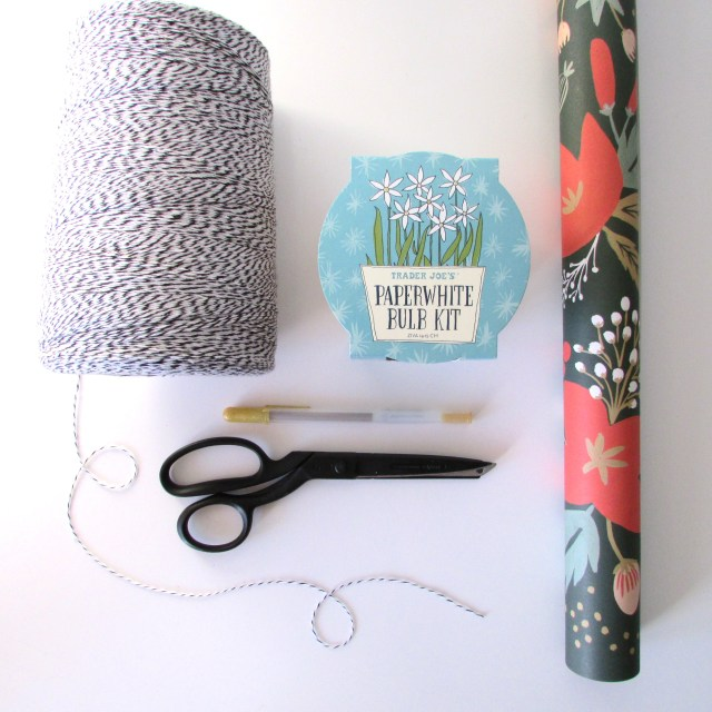 Paperwhite Bulb Kit Francois Et Moi